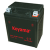 YTX7L-BS Sealed Maintenance Free Battery 12V SMF Powersport Motorcycles Scooters ATVs