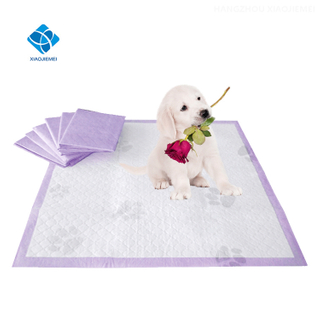 China Manufacture of The Disposable Pet Puppy Dog Training Pee Pad for Small Dogs