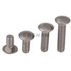 Stainless Steel Ss316 Round Head Square Neck M6 Carriage Bolt