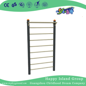 High Quality Outdoor School Gym Equipment Ribbed Frame (HHK-13705)