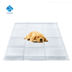 Disposable Pet Training and Puppy Sleeping Wee Wee Pads