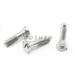 Stainless Steel 316L Flat Head Two Support Slotted Machine Screw