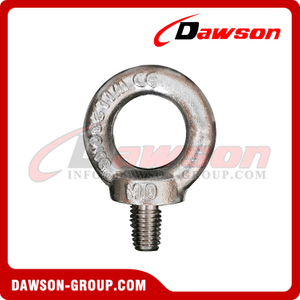 Stainless Steel 316 Drop Forged DIN580 Lifting Eye Bolt