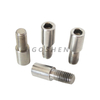 Stainless Steel 304 316 M8 M10 M12 Non-standard Anti-theft Screw