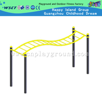 Outdoor School Gym Equipment Waved Climbing Ladder For Limbs Training On Stock (HD-12906)