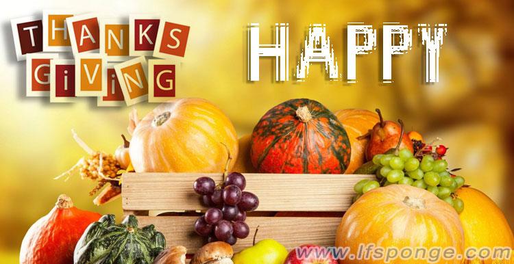La vie-nano-souhait-vous-un-merveilleux-jour de Thanksgiving