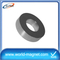 Neodymium Ring Magnets with Low Price