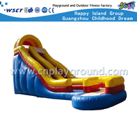 Outdoor Commercial Inflatable Slide For Children Play (HD-9404)