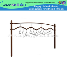 Outdoor School Gym Equipment Hand Climbing Ladder for Children Limbs Training (HA-12804)