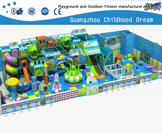 Small Indoor Ocean Advance Playground under Sea Play System Equipment (H14-0911)