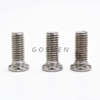 Stainless Steel FHS Screw