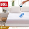 Target Price Non Slip Design Terry Fabric Waterproof Mattress Cover
