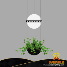 Villa Hotel Ecological Plant Hanging Pendant Lighting (HP813/1+1)