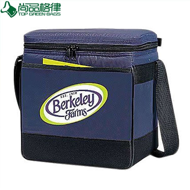 Factory Wholesale Deluxe Cooler Lunch Bag (TP-CB271)