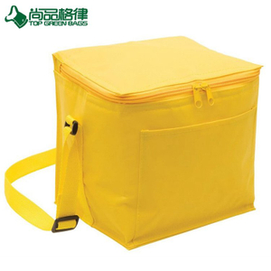 Small Nylon Cooler Bag Custom 6 Can Ice Pack Cooler Bag with Front Pock(TP-CB481)