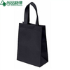100% Biodegradable 80GSM Non Woven Bag Shopping Bags (TP-SP441)